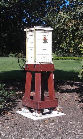 White House Garden & Beehive