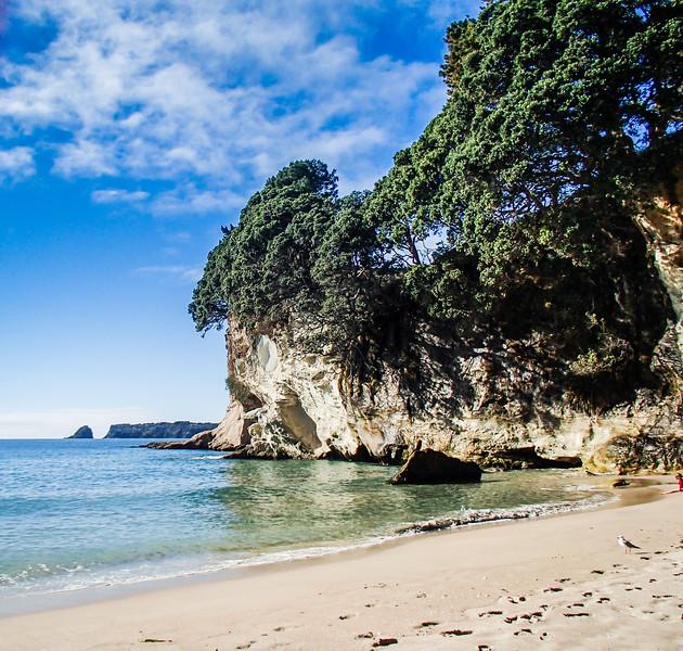 2014-08 New Zealand 0558