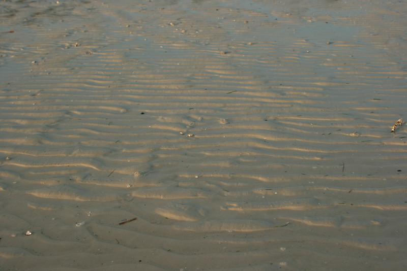 2009-04-165.jpg