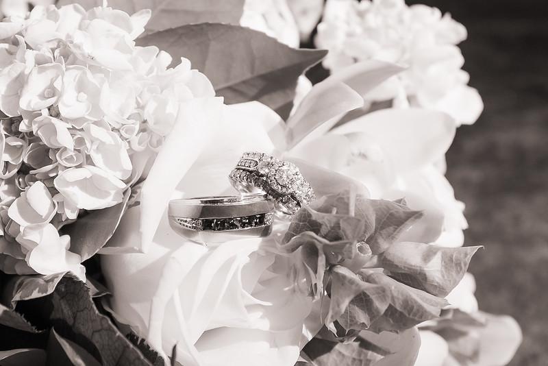 Central Park Wedding - Lori & Russell-192.jpg