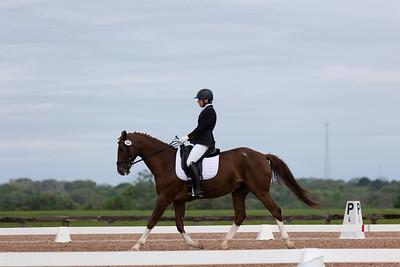 Horse 360