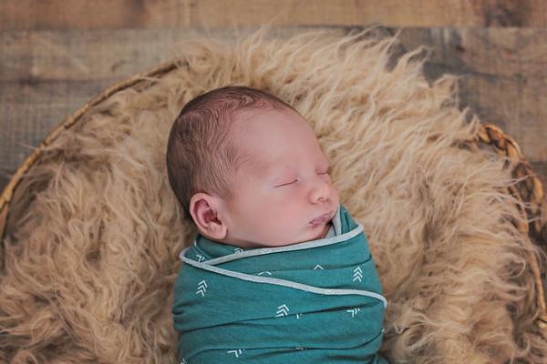Camden's Newborn