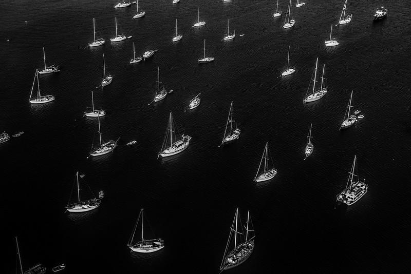 Surplus of Sailboats.jpg