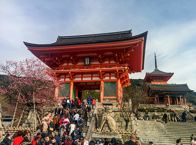 Kyoto, Japan - 2016