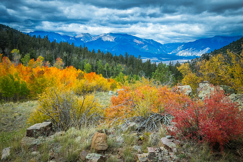 Aspen Ridge Color.jpg