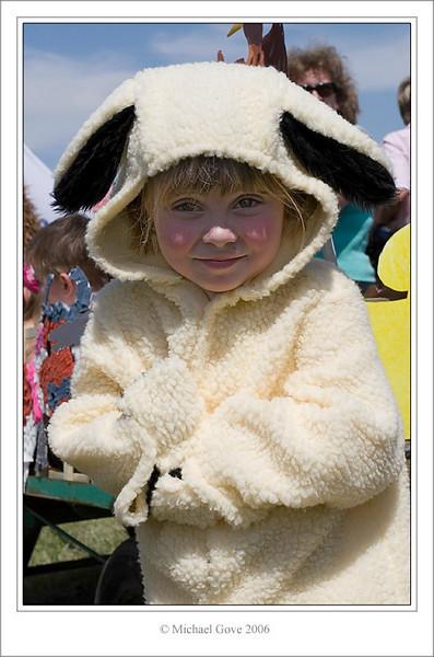 Sheep (61624082).jpg