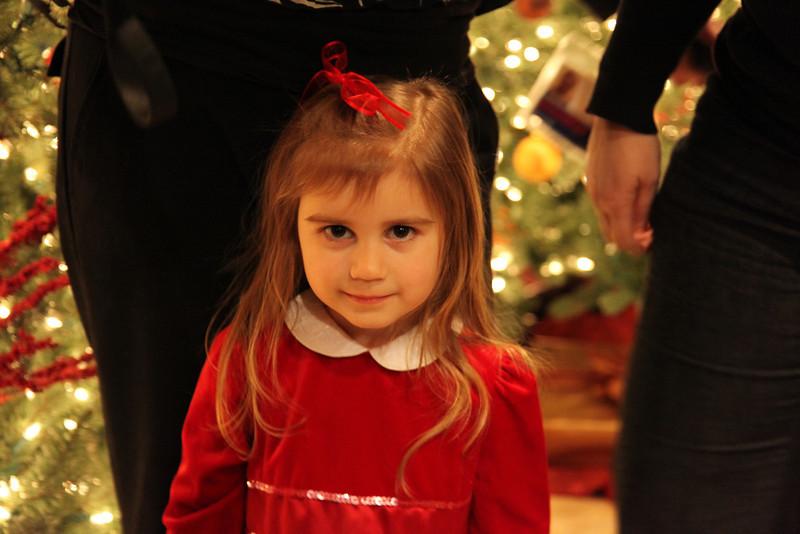 BCA Christmas 09 520.jpg