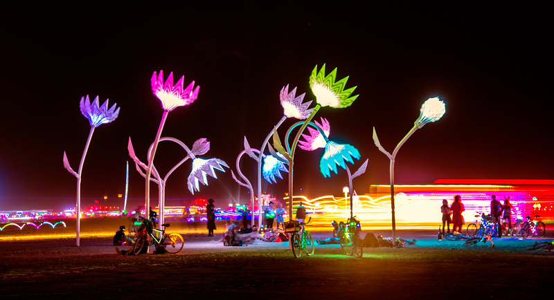 Electric Nights  |  Burning Man