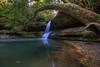 Madlyn Falls