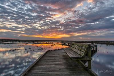Anahuac NW Refuge - Sunrise on the Boardwalk  3-18-19