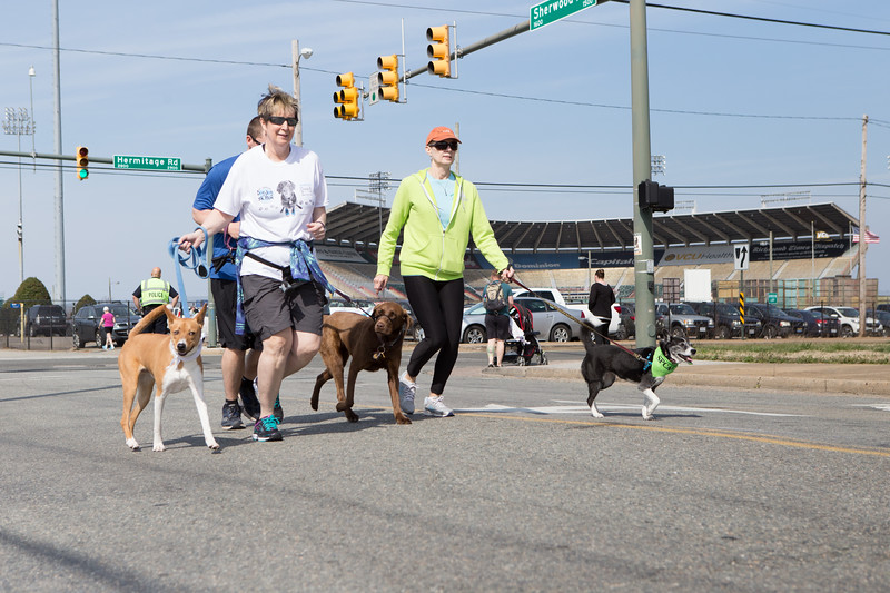 15thRichmondSPCADogJog-449.jpg