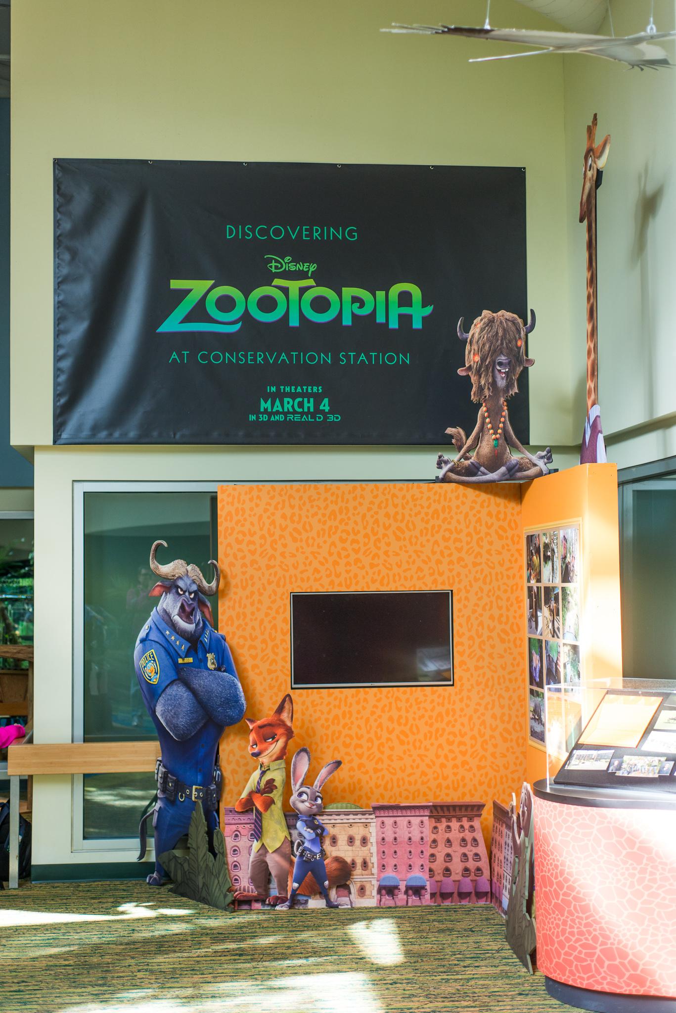 Zootpia Exhibit at Disney's Animal Kingdom