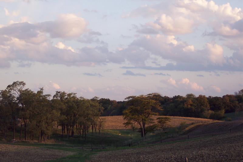 Autumn 07 029.jpg