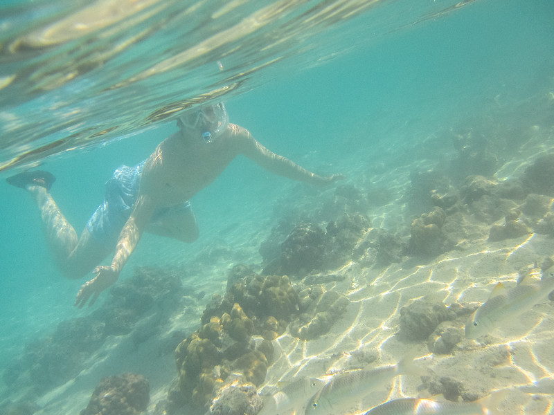 Rarotonga-Cook-Islands-2014-10.jpg