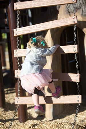 Loveland Playground