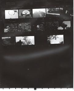 Film Roll #1
