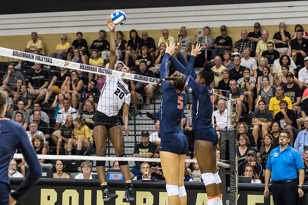 Purdue Volleyball vs Illinois 2016-9-21