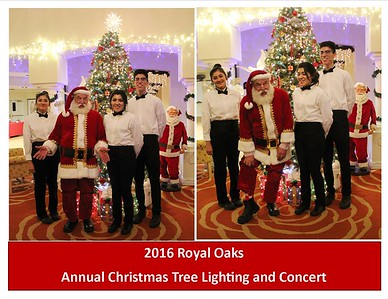 2016 Christmas Tree Lighting and Concert