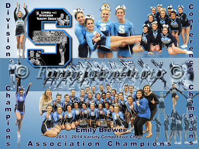 Emily Brewer Collage Review
