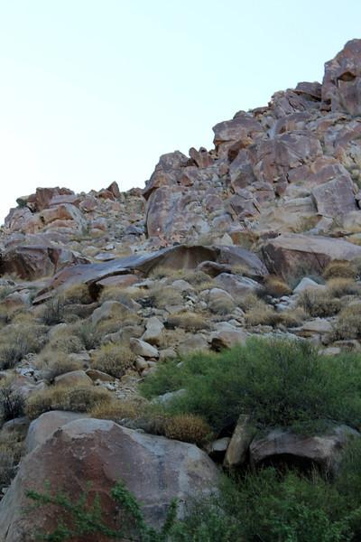 05 Cougar Canyon (165).JPG