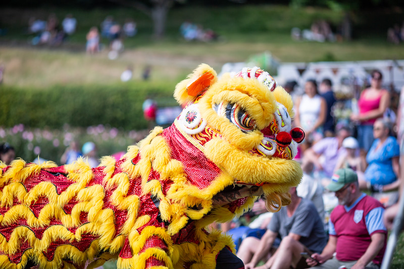 2018 - Misc Tunbridge Wells Mela 032