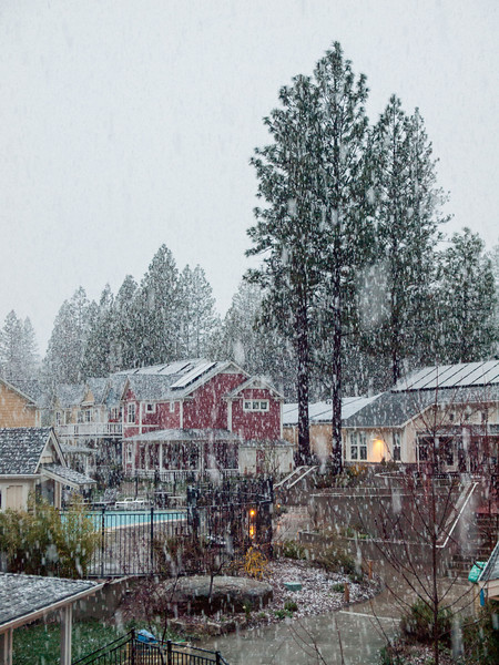 Huge snowflakes falling at NC Coho, April 13, 2012