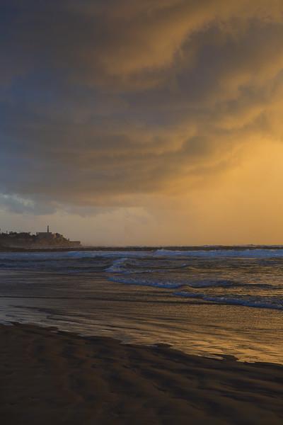 Golden Jaffa