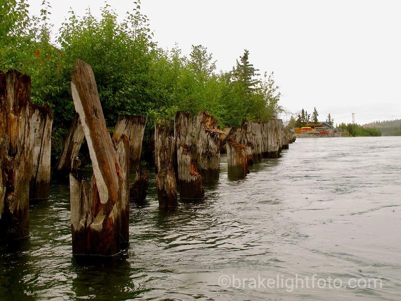 Old Pier Pilings
