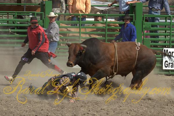 2013 Arlington Jackpot Rodeo (Bulls)