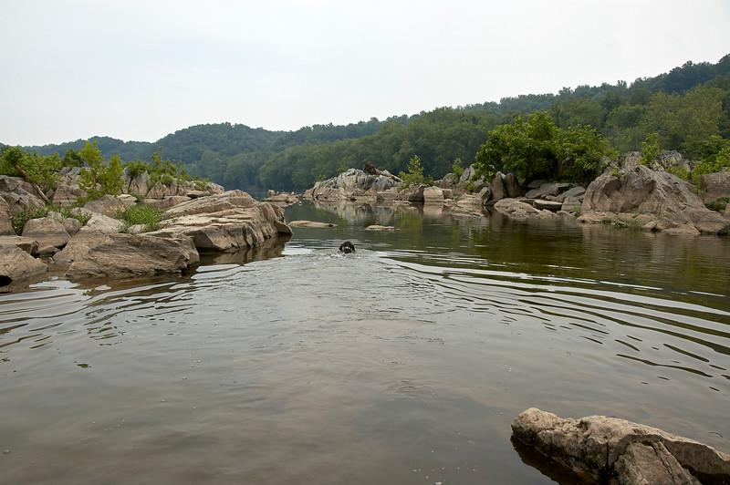 Morgen at Great Falls Park 3 - 2007.07.07 - DSC_0112.jpg