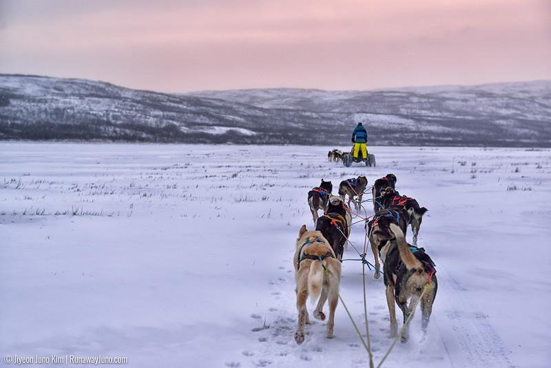 Nov.13_Finnmark-6107290.jpg