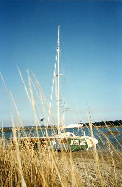 Beached (Tasmania)_2.JPG