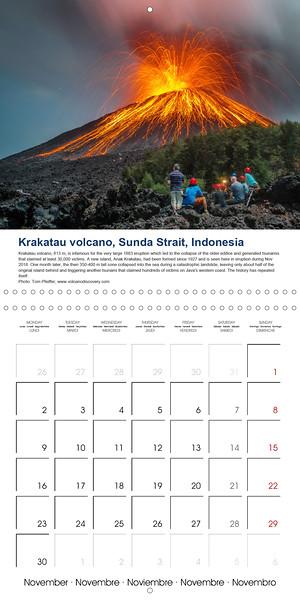 calendar-2020-11.jpg