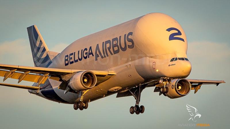 Airbus Transport / Airbus A300 Beluga / F-GSTB
