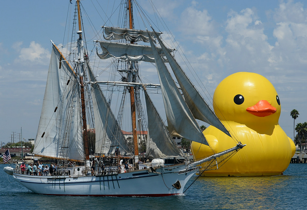 . Tall ships, and the world\'s largest rubber duck, make their way up the Main Channel, past a large crowd at Warehouse 1, in the Port of Los Angeles for the Grand Parade of Sail Wednesday, August 20, 2014, San Pedro, CA.   Photo by Steve McCrank/Daily Breeze