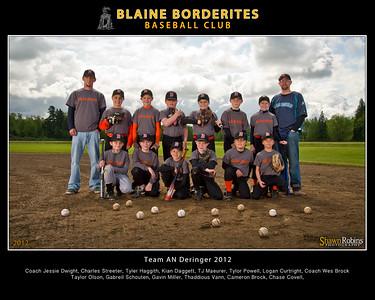 Team Baseball 2012 8x10
