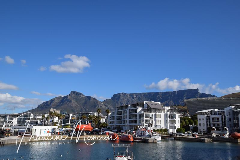 South Africa (118 of 5206).jpg