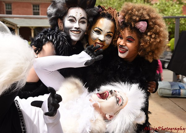 05-27 American Art Museum of New Britain - Broadway Cats