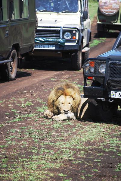 Ngorongoro (99).JPG