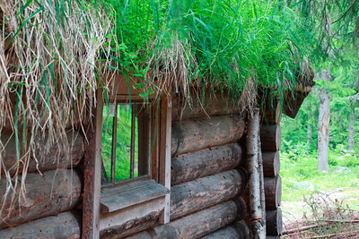 Log house with grass roof
