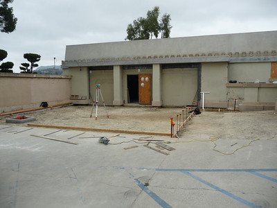 8.  Hollyhock House, April 2011