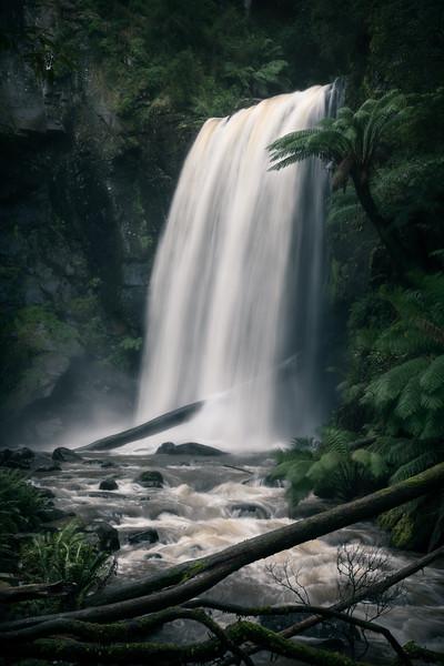 Ancient Flows || Otways National Park