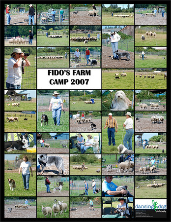 Fido Farm Camp Posters