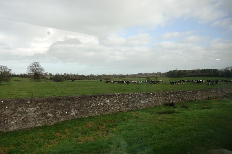 Road to Cashel,Ireland_GJP02067.jpg