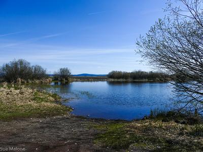 04-24-2018 Kayaking to Crystal Spring