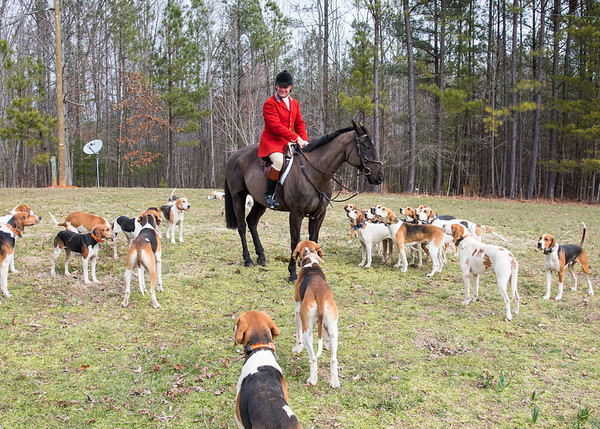 DRHC Thistle Run Road Hunt 2-27-2016