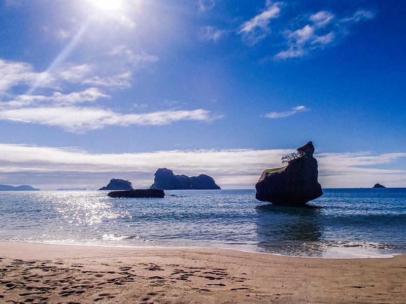2014-08 New Zealand 0561