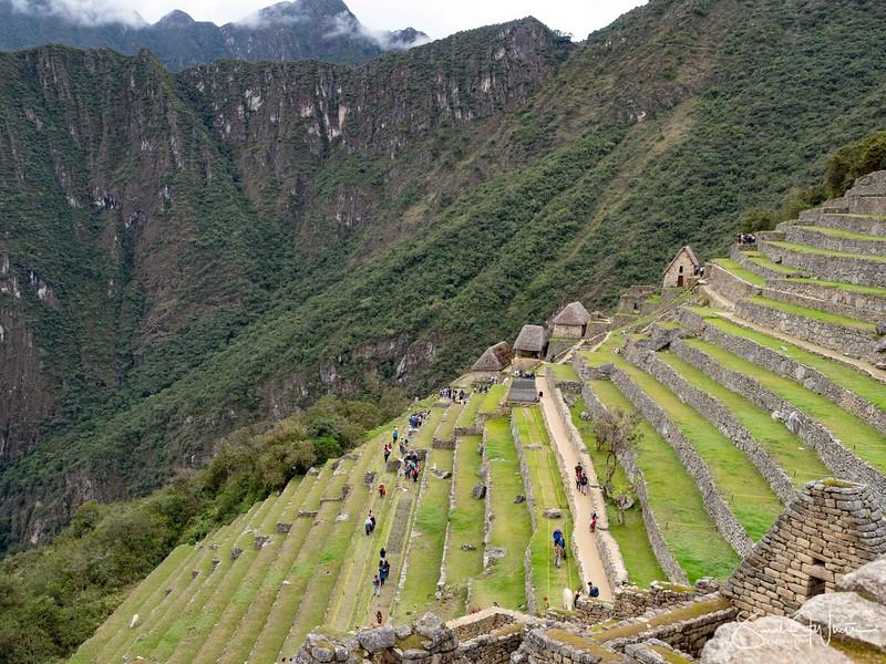 Peru-19102019-1207.jpg