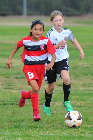 CSC Girls (U-11) vs Notts Forest 11-15-2014