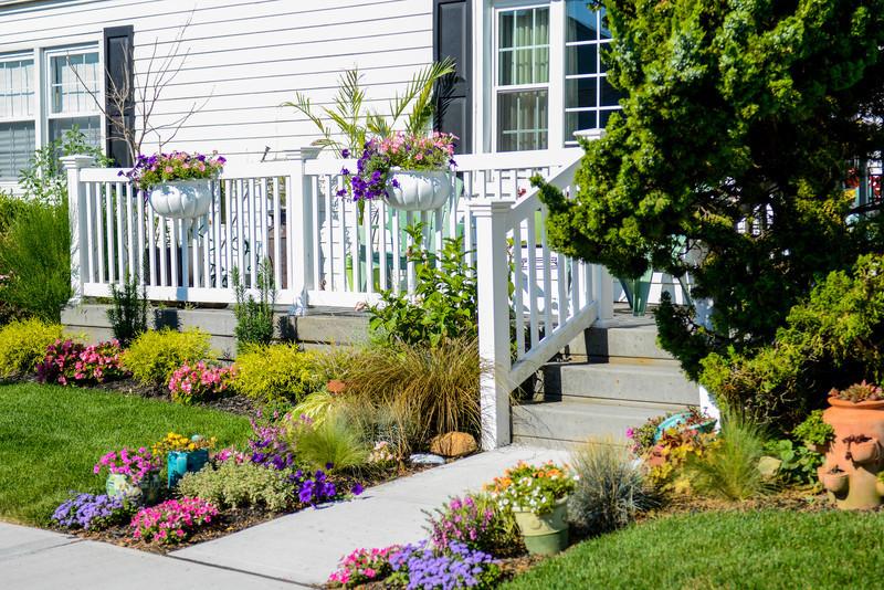 House and Garden-001.jpg